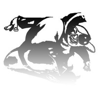 raftol (raftol) – наполнение и поддержка сайтов, joomla