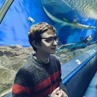 Ильнар Каримов (afeozzz) – Android developer
