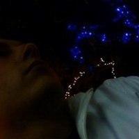 edelweiss-46160