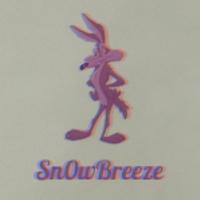 Mike Breeze (sn0wbreeze) – Web