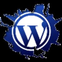 Андрей Левдиков (raten) – Верстальщик, веб-разработчик на WordPress