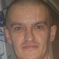 vlasov-lenia2014