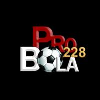 pro-bola228
