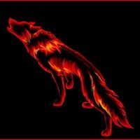 zheka-volkov1