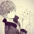 johny_cat