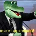 KargoZ