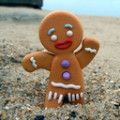 GingerbreadMSK
