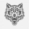 13werwolf13