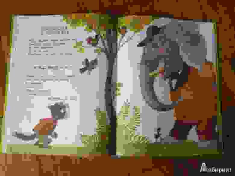 Вежливый слон, Р.Муха
