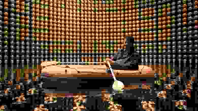 Тайсон Нил Деграс в детекторе нейтрино