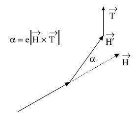 Рисунок 2.9. Коррекция а сегмента H благодаря тропизму T.