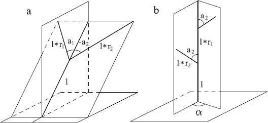 Рисунок 2.2. Геометрия дерева согласно Хонде.