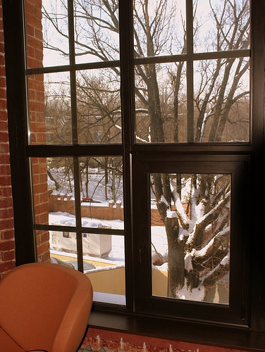 Дом Яндекса: библиотека, вид из окна