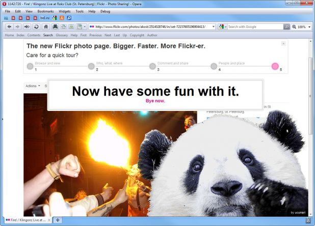 Panda on Flickr page