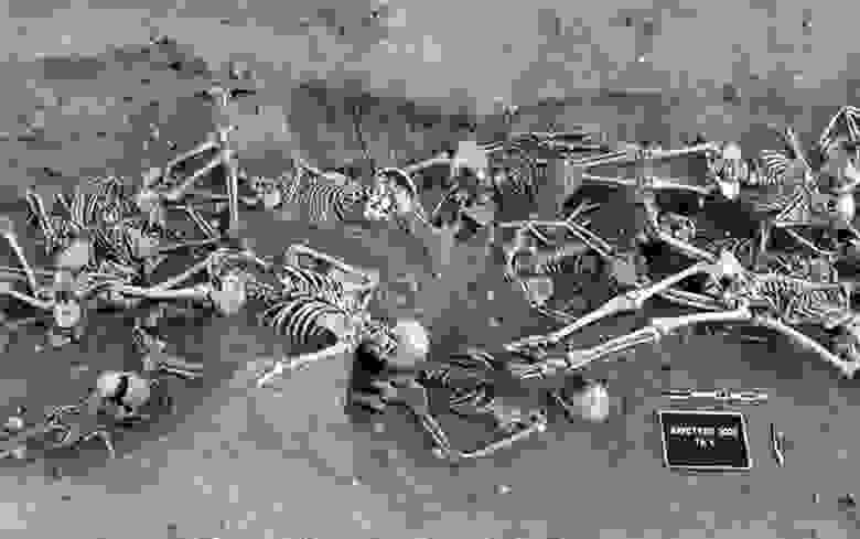 Чумное захоронение в Марселе. Из зубов умерших археогенетики смогли извлечь фрагменты ДНК и по ним реконструировать геном чумной палочки, в 1720-1722 годах погубившей больше 100 тысяч жителей Марселя и окрестностей