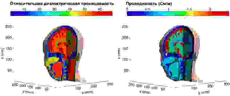 Относительная диэлектрическая проницаемость и проводимость тканей внутри человеческой головы на частоте 1 ГГц. Это модель женщины. Она была сделана много позже Джозефа и более гуманными методами (МРТ).