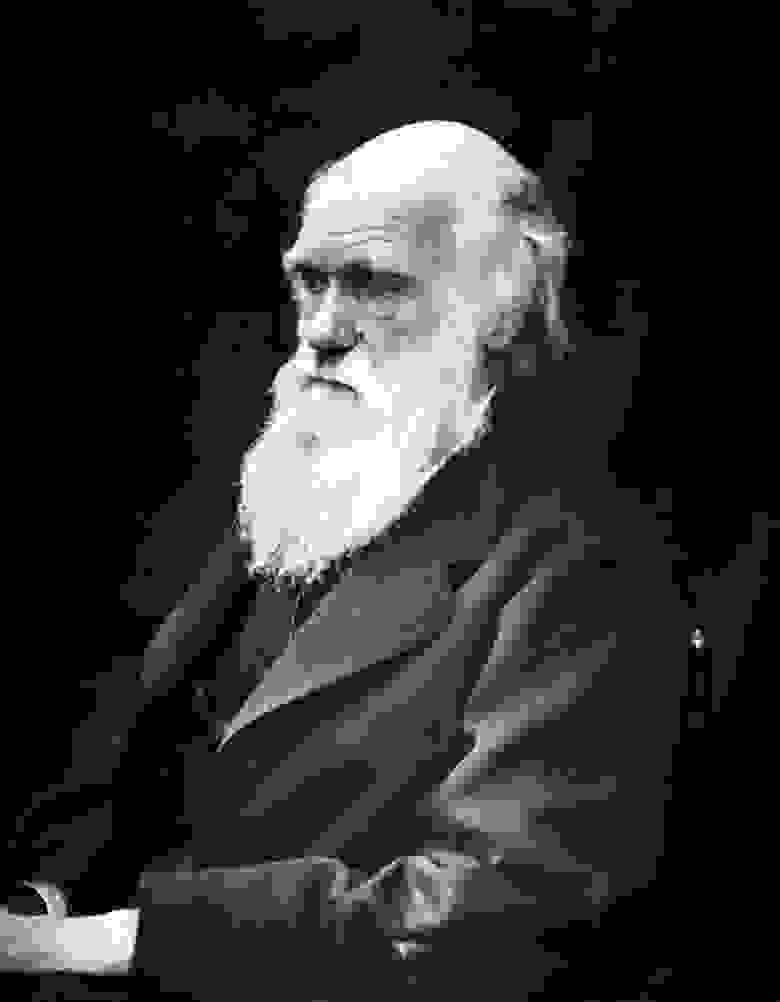 Чарльз Дарвин, натуралист