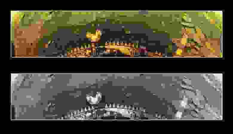 Первое цветное изображение Венеры. Фото снизу в современной обработке
