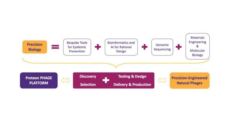 Проприетарная платформа для работы с бактериофагами компании Proteon Pharmaceuticals SA сочетает в себе процессы и механизмы, оттачиваемые уже более 10 лет