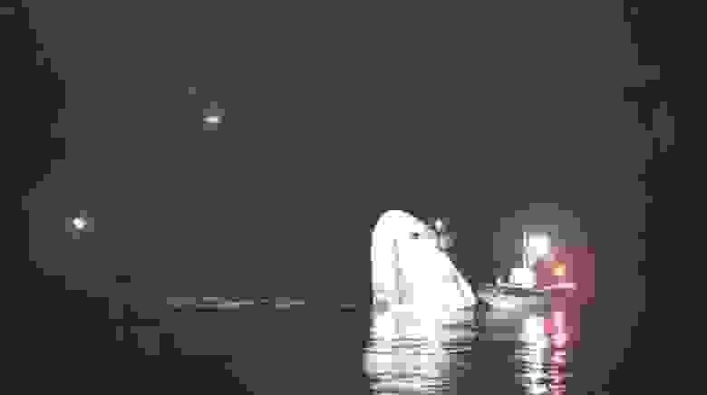 Crew Dragon в водах Мексиканского залива