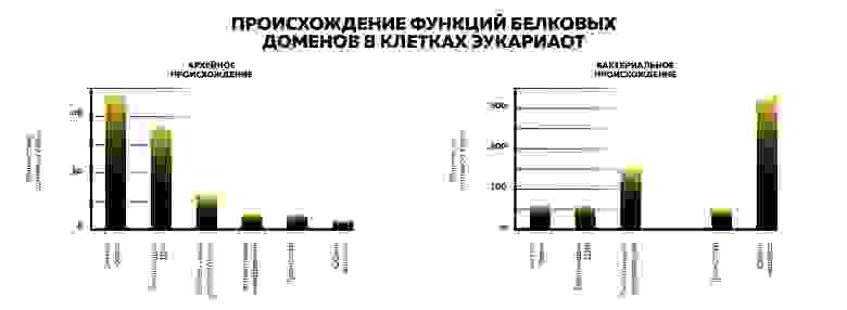 Рисунок 4. Источник: собственная иллюстрация на основе материала книги Михаила Никитина «От туманности до клетки»