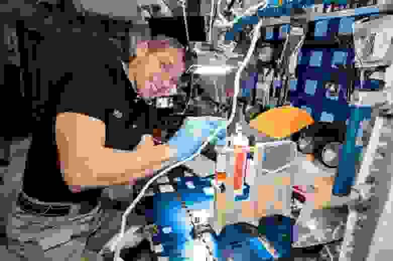 Член экипажа МКС Майк Хопкинс проводит эксперименты по гидропонике.