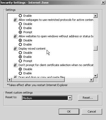 InternetExplorer's 'Internet Zone' settings, a lot of options with unclear purpose