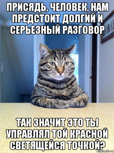 Кот: «Присядь, человек, нам предстоит долгий и серьёзный разговор. Так значит это управлял той красной светящейся точкой?»
