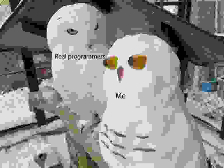 Настоящие программисты и я