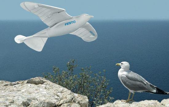 Команда разработчиков из Festo создала чайку-робота SmartBird