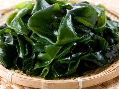 Южная Корея собирается использовать водоросли в качестве источника топлива