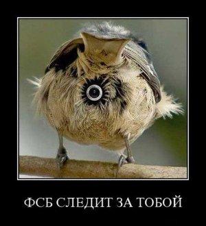 FSB watching you