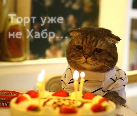 День рожденья только раз в году
