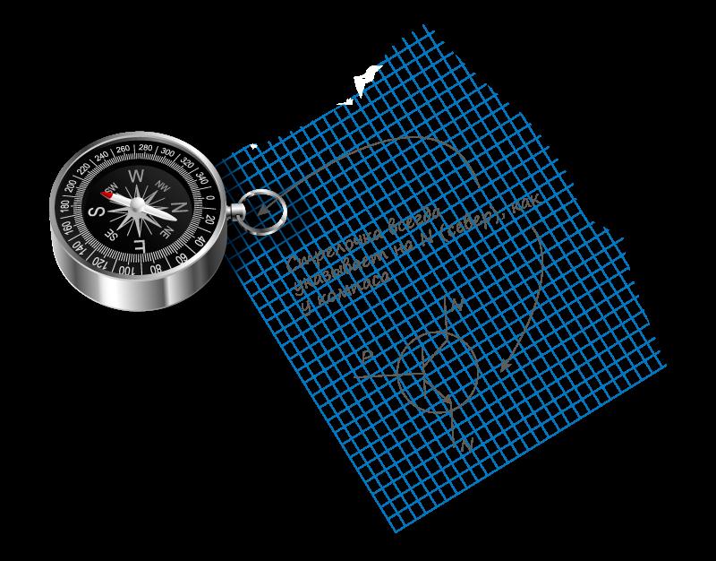 N (n-тип полупроводника).