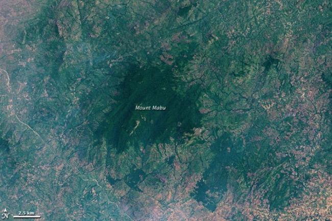 Тропический лес на горе Мабу