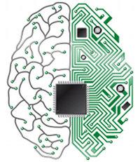 Вечная жизнь: замена мозга другим носителем с сохранением сознания и личнос ...