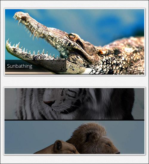 Скриншот слайд-шоу на чистом CSS3