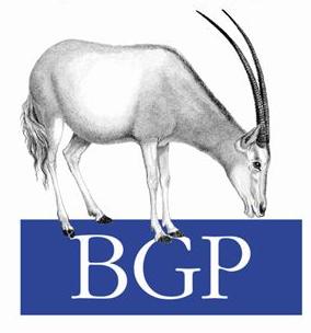 BGP: некоторые особенности поведения трафика