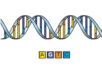 Биоинформатика / Практическая биоинформатика ч.4. Готовимся работать с ZINBA