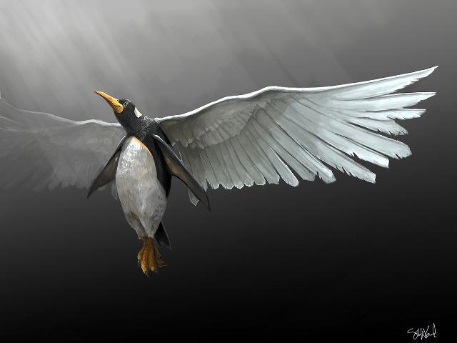 Устанавливаем любой Linux дистрибутив на Digital Ocean