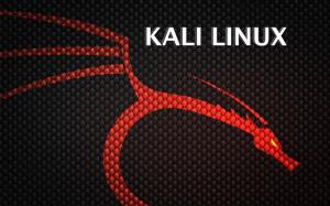 Новый дистрибутив Backtrack: встречайте Kali Linux