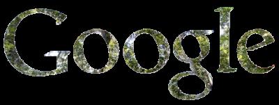 На Google Maps появилось 50 тысяч изображений Амазонки