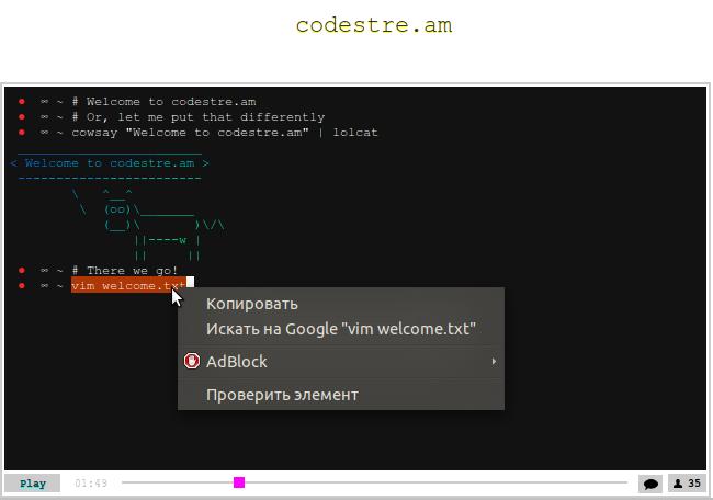 codestre.am — потоковая запись терминала