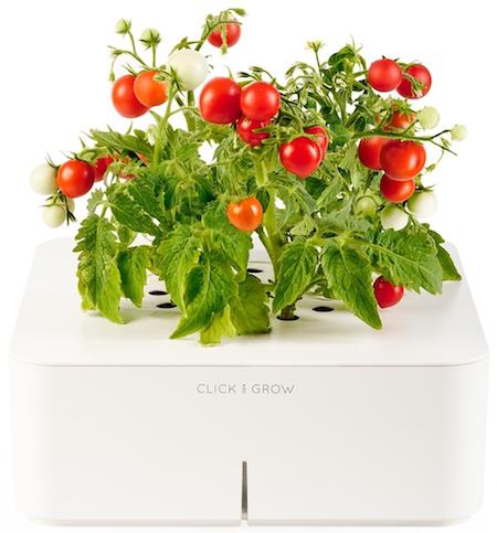 Цветок-гаджет и другие оригинальные и полезные подарки на 8 марта, помогающие сохранить здоровье, сэкономить время и насладиться жизнью.