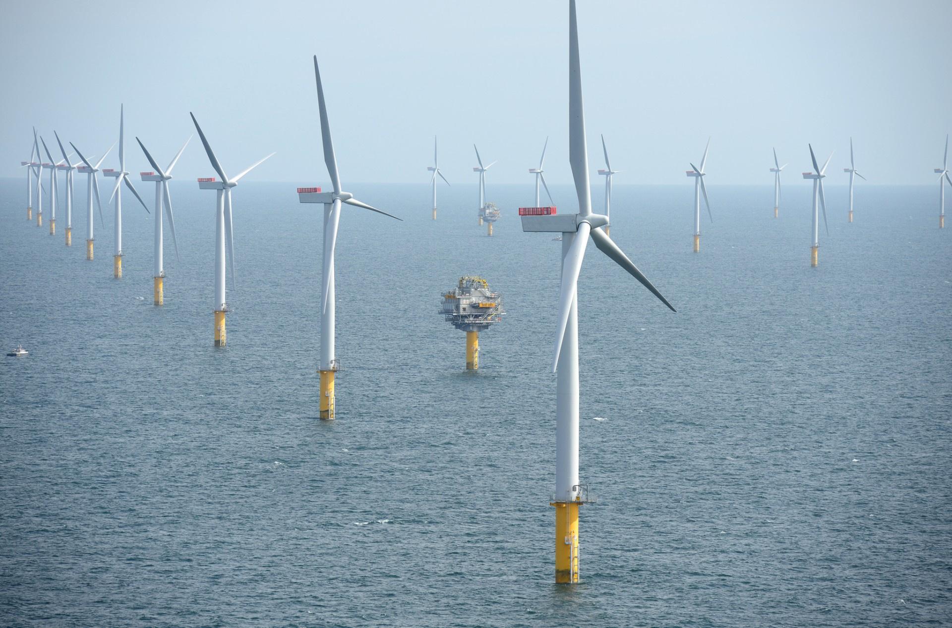 Ветровая энергетика впервые станет прибыльной без субсидий и дешевле атомной энергии