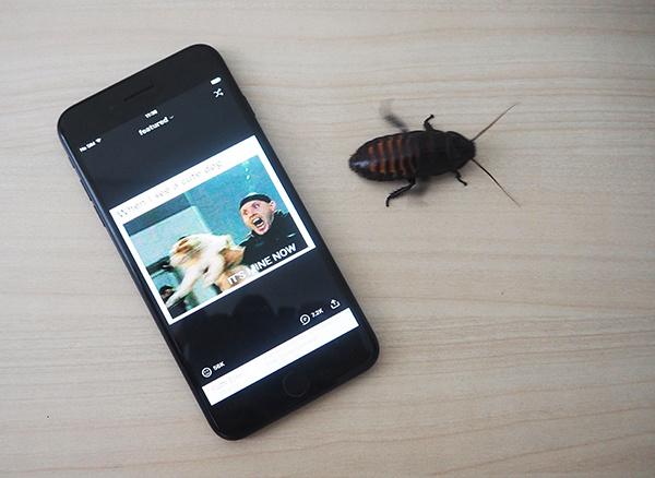 UI-тесты для iOS: почему нужно поверить в дружбу QA и разработки, но не обольщаться