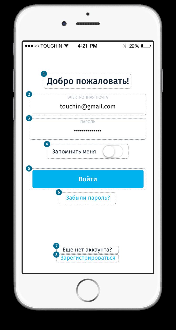 Дизайн экрана логин с дополнительной информацией для VoiceOver