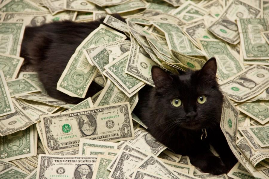 сумма денег потеряна при игре в