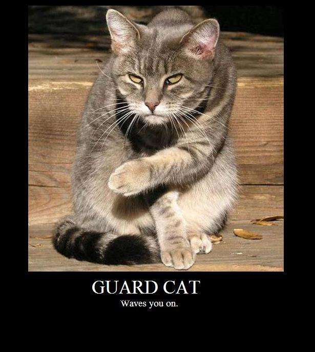 Пишем Guard