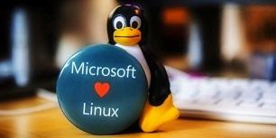 Виртуальные твари и места их обитания: прошлое и настоящее TTY в Linux